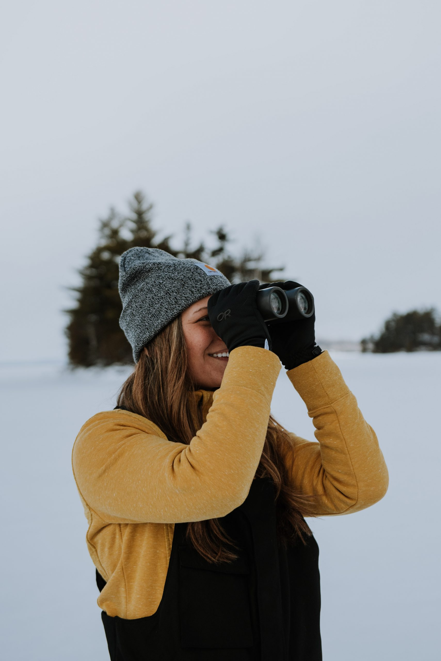 bird watching on Moosehead Lake in Maine
