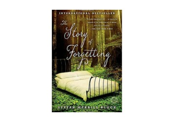 The Story of Forgetting book cover
