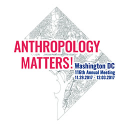 AAA 2017 Conference Logo