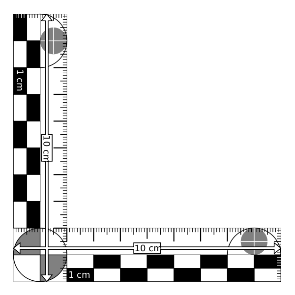 A 10cm long black and white photography scale with an x and y axis.