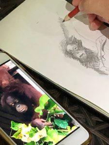 Observing orangutans in Borneo, Photography Julia Landford