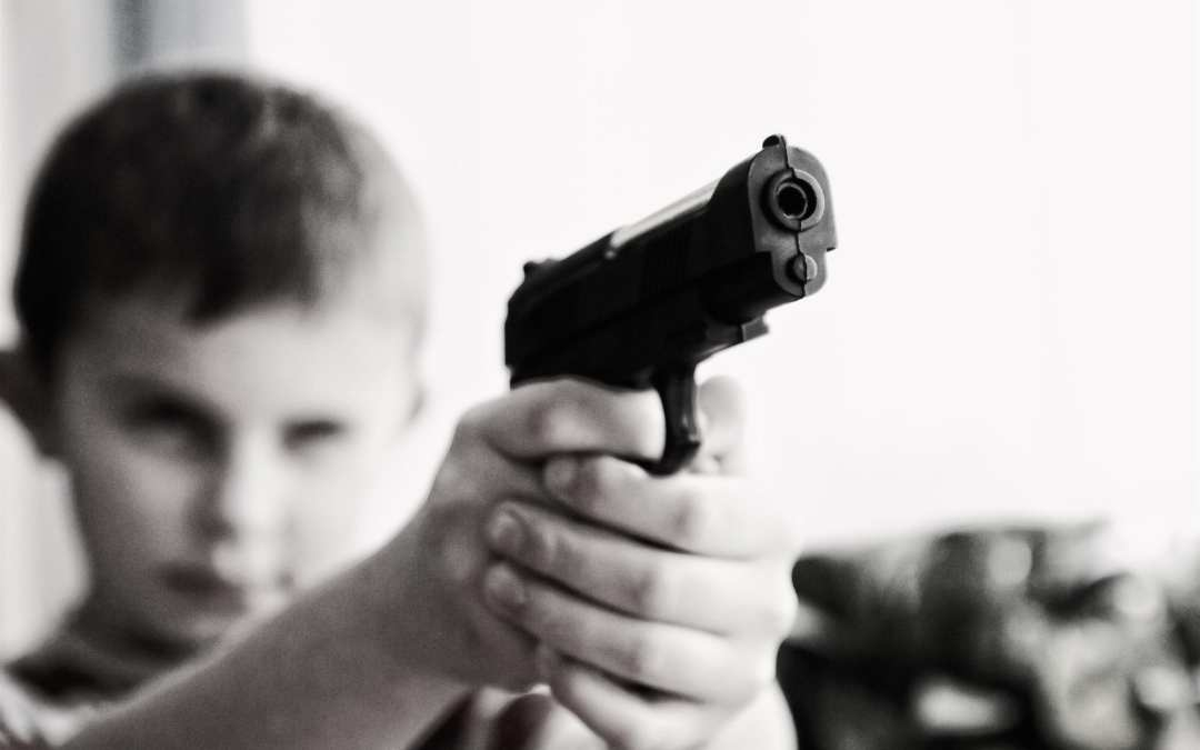 "Gun Safety: A ""Touchy"" Public Health Concern"