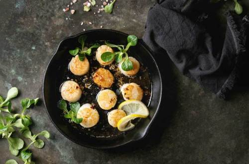 Health Benefits of Eating Sea Scallops