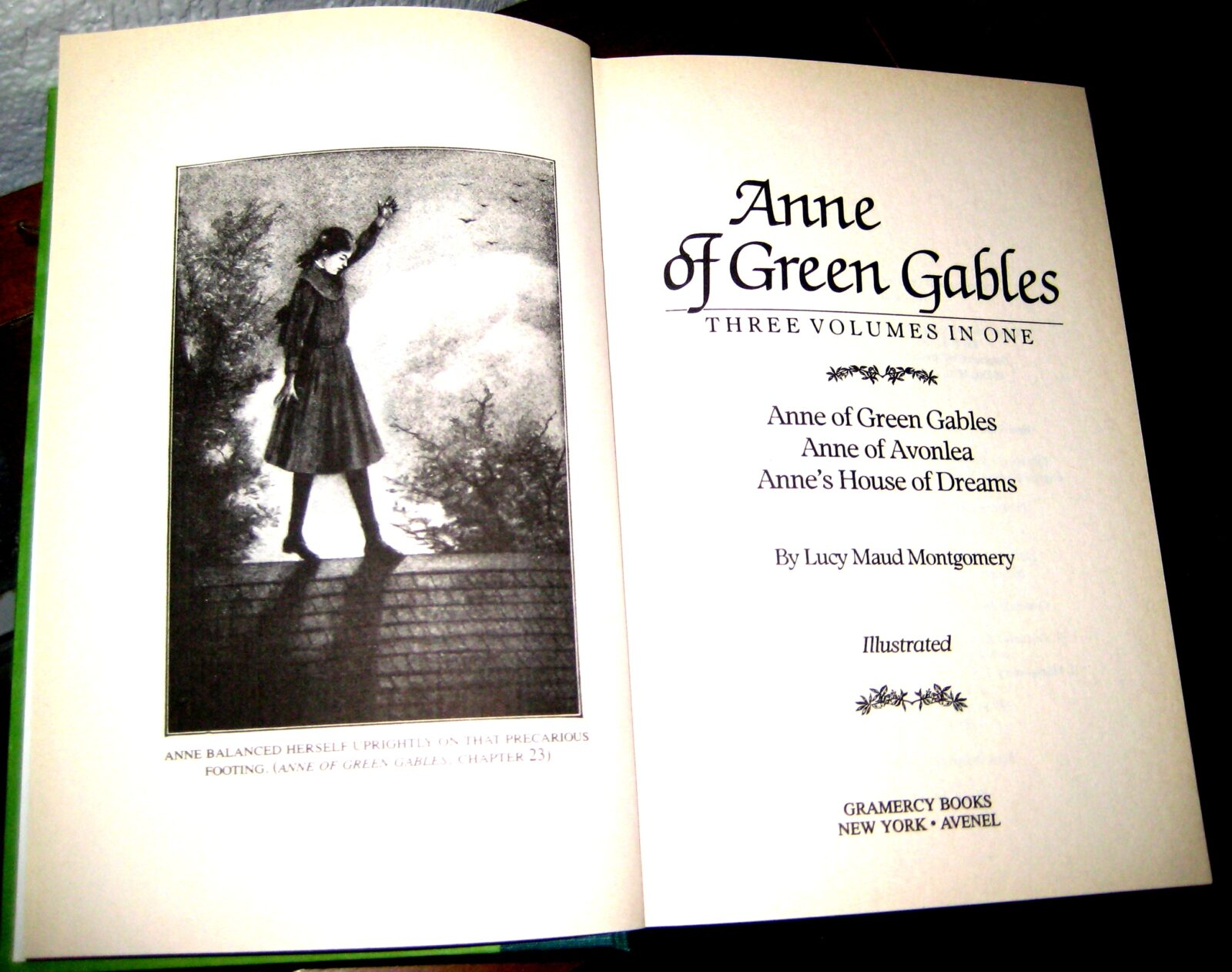 Chapter Books Anne Of Green Gables