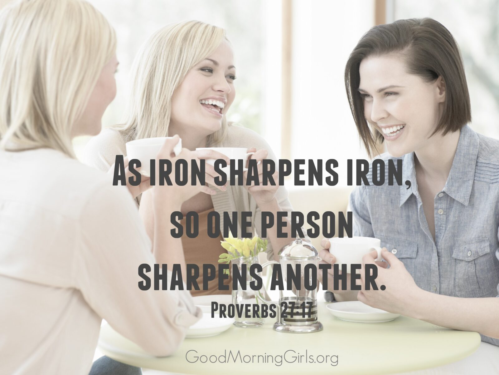 Proverbs 2717 iron sharpens iron