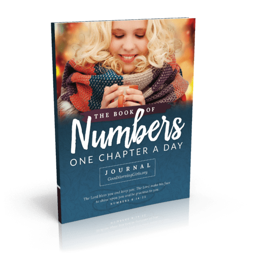 The Book of Acts Journal - One Chapter a Day
