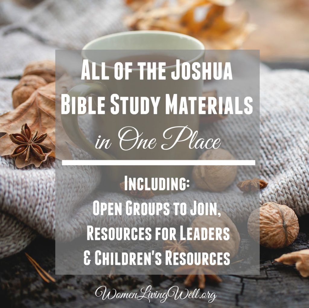 All of the Joshua Bible Study Materials in One Place