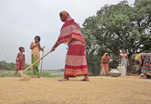 BANGLADESH: Bureaucratic hitch leaves women farmers high and dry