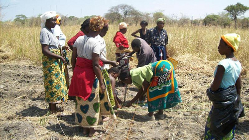 ZAMBIA: Women farmers need funding in face of climate change says environment advocates