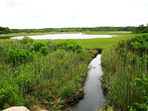 United States water estuaries show sensitivity to climate change, says NOAA