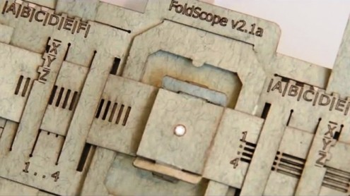 Global citizen scientists discover new micro-worlds with Foldscope