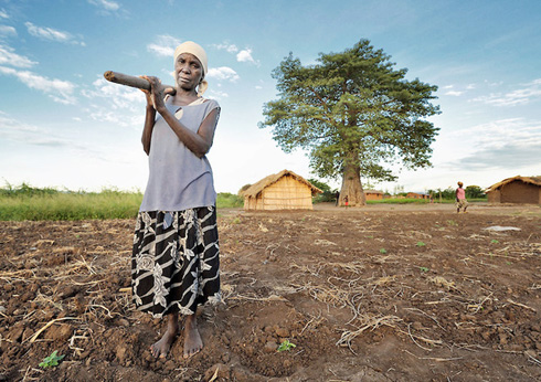 [Zimbabwe] Traditional leaders support land for women