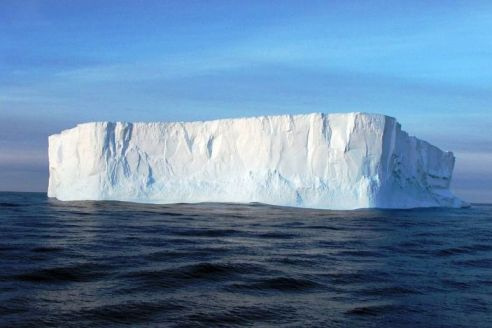 Antarctic iceberg melts increase as local fauna dies