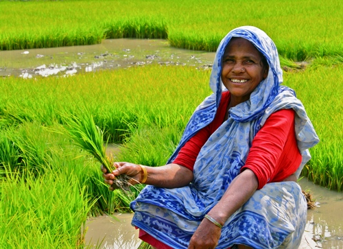 When Invisible Lives Become Visible: Seeing the valuable work of India's rural women