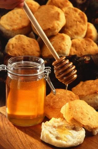 honey-386714_1280