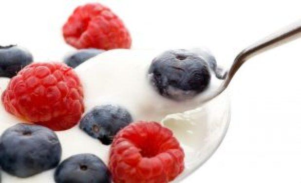 probiotic-greek-yogurt-probiotic-foods-assets-of-weight-loss