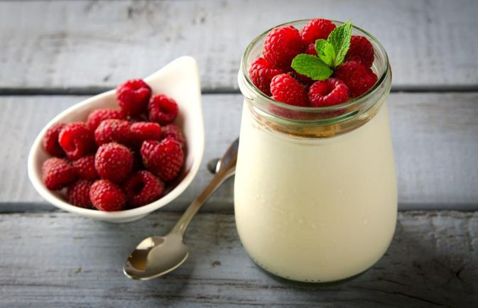 How does the Greek Probiotics yogurt assist?