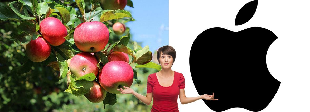 Pure Organic Raw Apple Cider Vinegar - Boosts Energy -Control Blood Sugar-Weight Loss