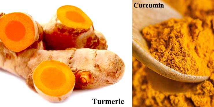 Latest 05 Best Turmeric Supplement Brands 2017 & Effect of Human Life – WomenProbiotic