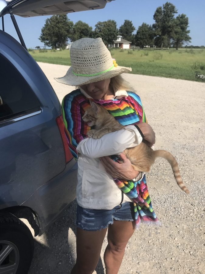 Amy finds out cats aren't so bad....