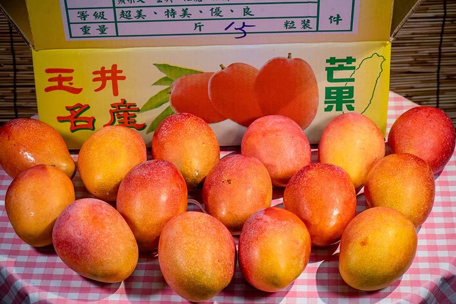 2021台南玉井愛文芒果、玉文芒果 – 訂購單 – 夏季必吃的水果之王