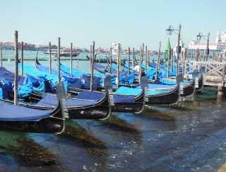 Venedig 8 Gondeln am Canale Grande