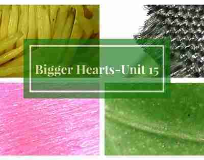 Bigger Hearts for His Glory- Unit 15