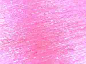 zOrb Digital microscope image of artifical rose petal