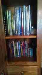 Revival to Revolution bookcase