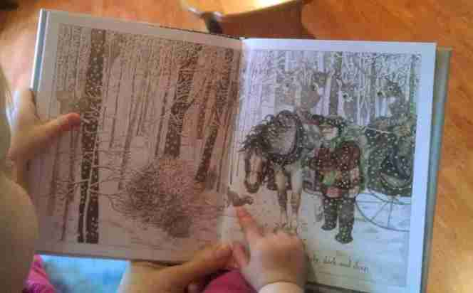 Beautiful picture books about snow