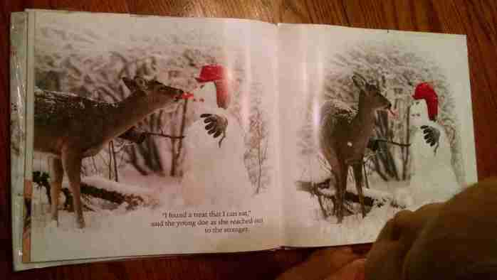 Beautiful Picture Books on Snow: Stranger in the Woods