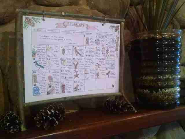 February Nature Day by Day Calendar