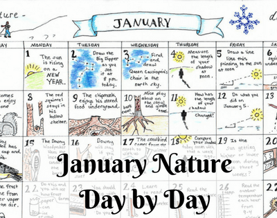 January Nature Day by Day Calendar