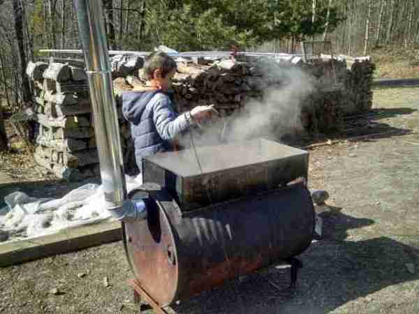 Maple Sugaring Nature Activity