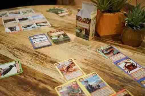 Ecologies board game