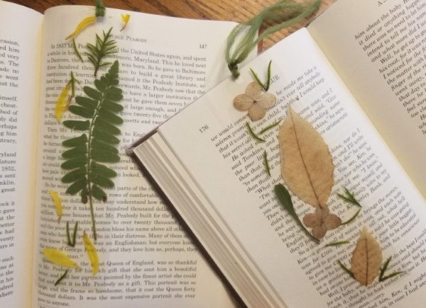 How-to-make-pressed-flower-bookmarks