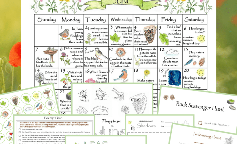 A Month of Nature Activities: June