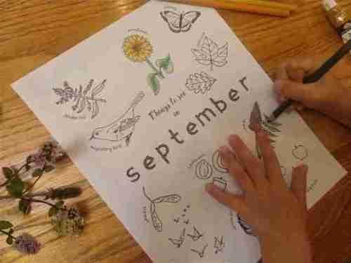 September Nature Study