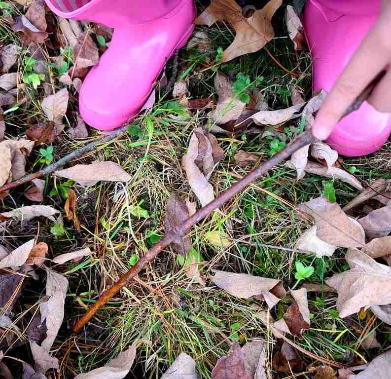 Digging-in-a-leaf-pile