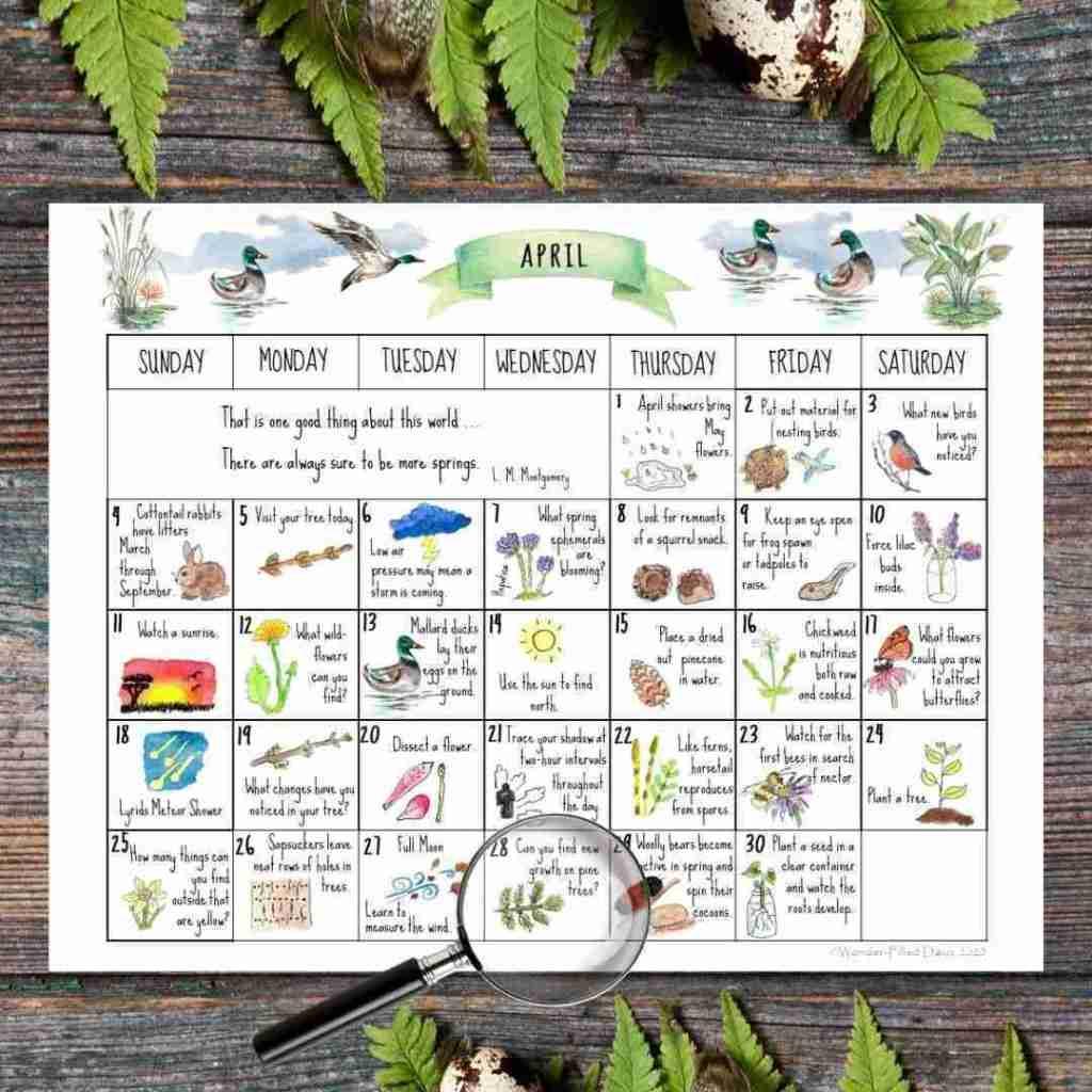 March Nature Calendar