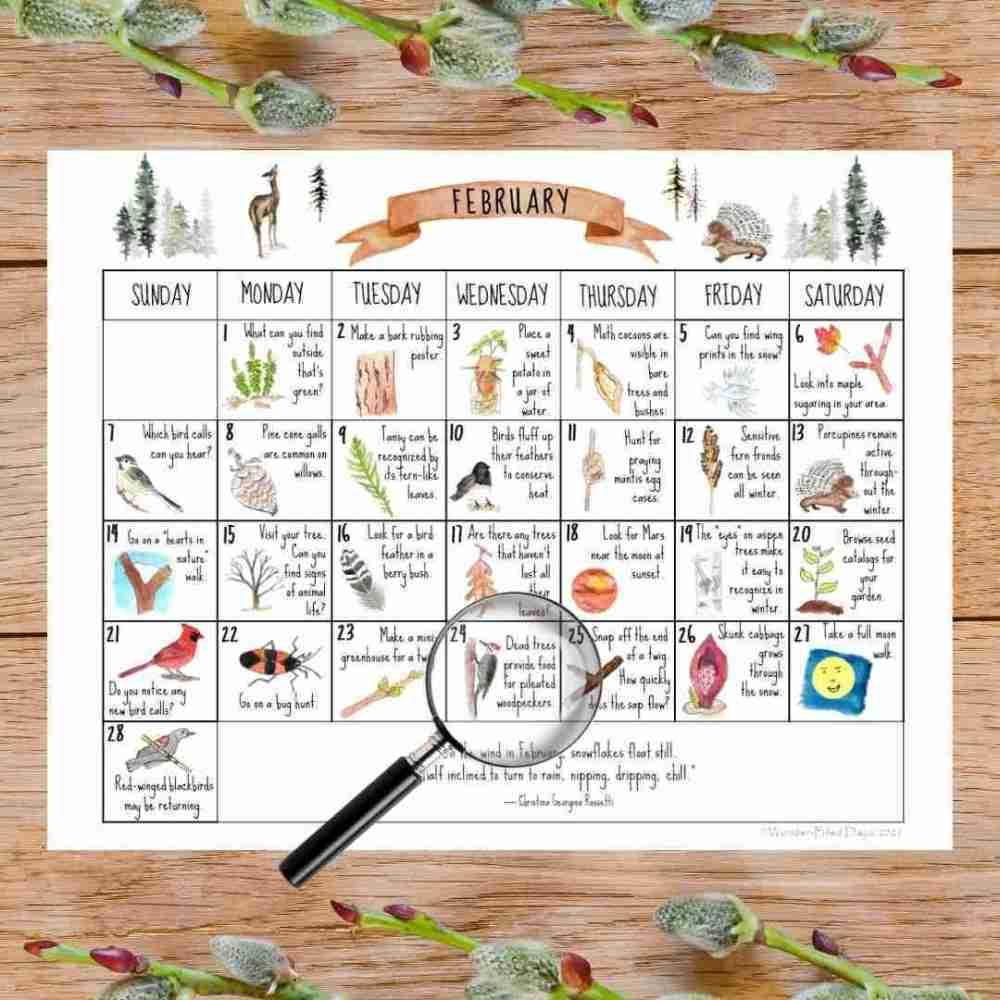 February Nature Calendar