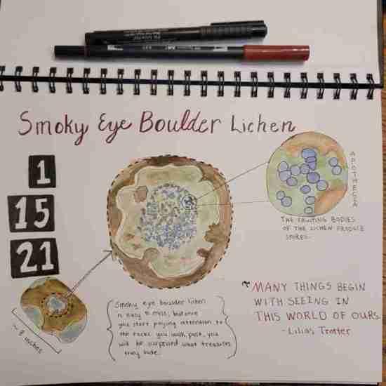 Smoky Eye Lichen journaling page