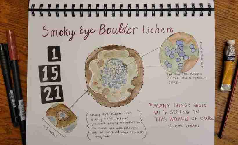 Smoky-eye-boulder-lichen-journal-page