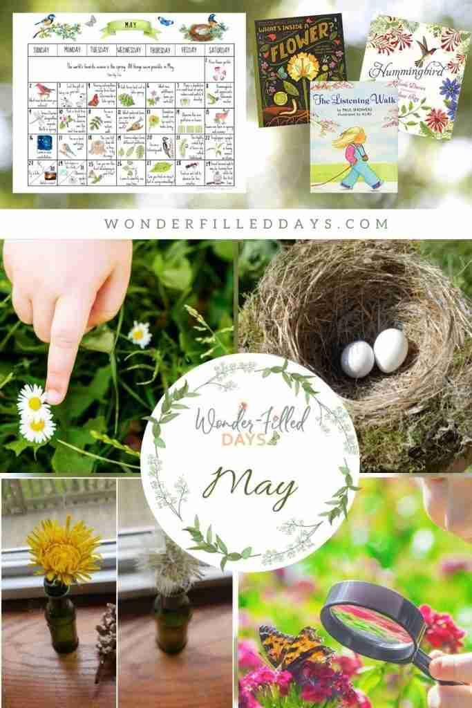 May Nature Calendar and Study