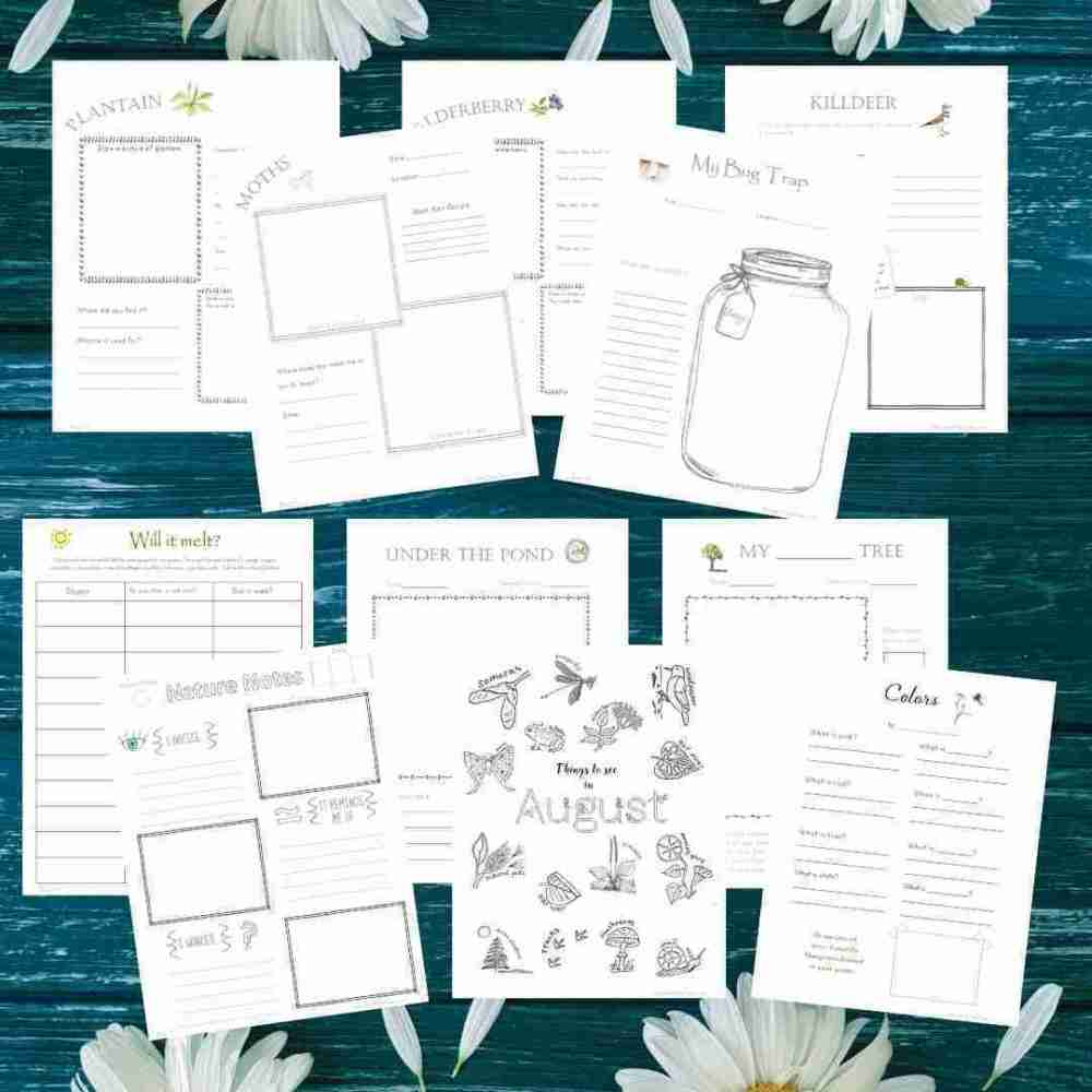 August Journal Sheets