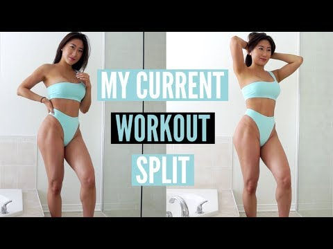 MY CURRENT WORKOUT SPLIT | Bicep & Tricep Exercises