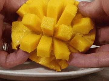 eating mango like a pro