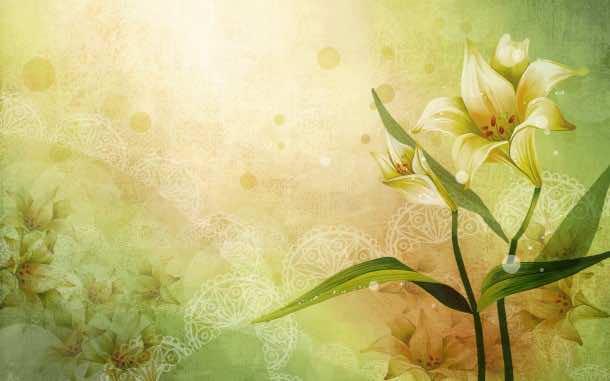 flower wallpaper 39