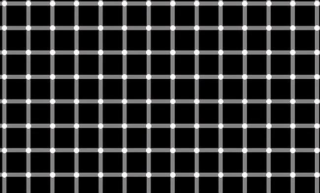 14 optical illusions10