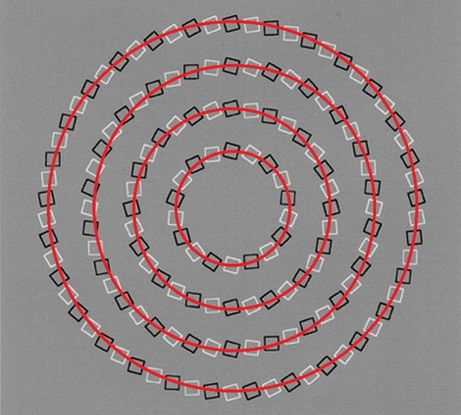 14 optical illusions3